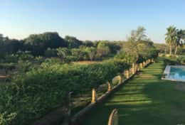 Le More - private countryside towards the tennis court - Spongano - Salento