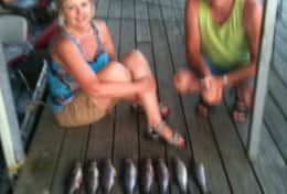 Our dock: good days catch