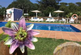 piscine-appartement-villas-coll-sant-marti-empuries-costa-brava