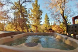 Hot tub under the pine trees