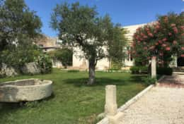 Essiccatoio - view from the garden - Gagliano del Capo - Salento