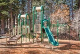 Guest Passes Included - Northstar Amenities - Playground