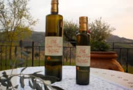 La Vigna wine and olive oil farm