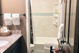newly remodeled downstairs bathroom