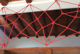 Attic's Protective Spiderweb